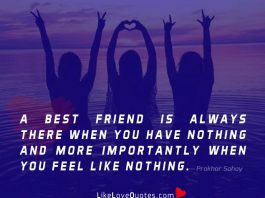 A best friend is always there when you have nothing and more importantly when you feel like nothing.