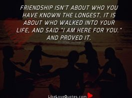 "Friendship isn't about who you have known the longest. It is about who walked into your life, and said ""I am here for you."" and proved it."