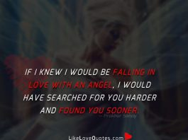 If I knew I would be falling in love with an angel, I would have searched for you harder and found you sooner.