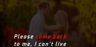 Please come back to me, I can't live without you.