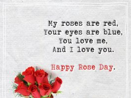 My Roses Are Read, Your Eyes Are Blue -likelovequotes