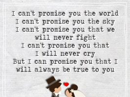 I Can't Promise You The World -likelovequotes
