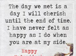 The Day We Met Is A Day I Will Cherish -likelovequotes