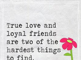 True love and loyal friends are two of the hardest things to find -likelovequotes