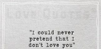 I could never pretend that I don't love you-likelovequotes