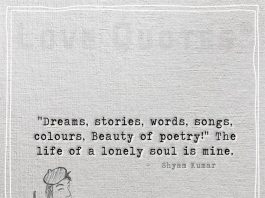 The life of a lonely soul -likelovequotes.com