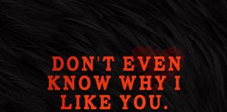 Don't Even Know Why I Like You-likelovequotes
