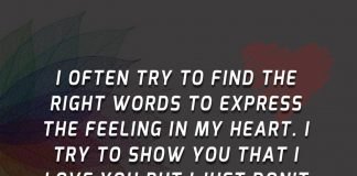 Right Words To Express The Feeling-likelovequotes