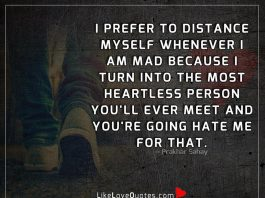 The Most Heartless Person You'll Ever Meet-likelovequotes